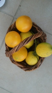 OrangesAndLemons
